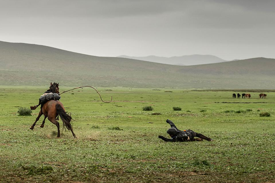Mongol Derby Rider