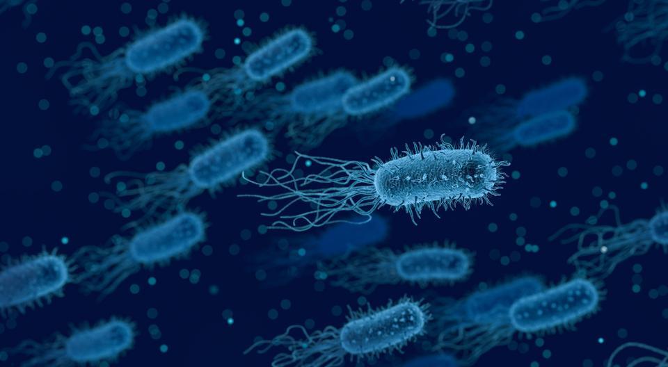 Spain Issues International Health Alert Over Listeriosis Outbreak