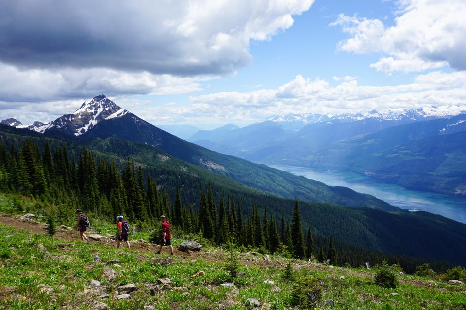Take a hike through the alpine forest in Revelstoke.