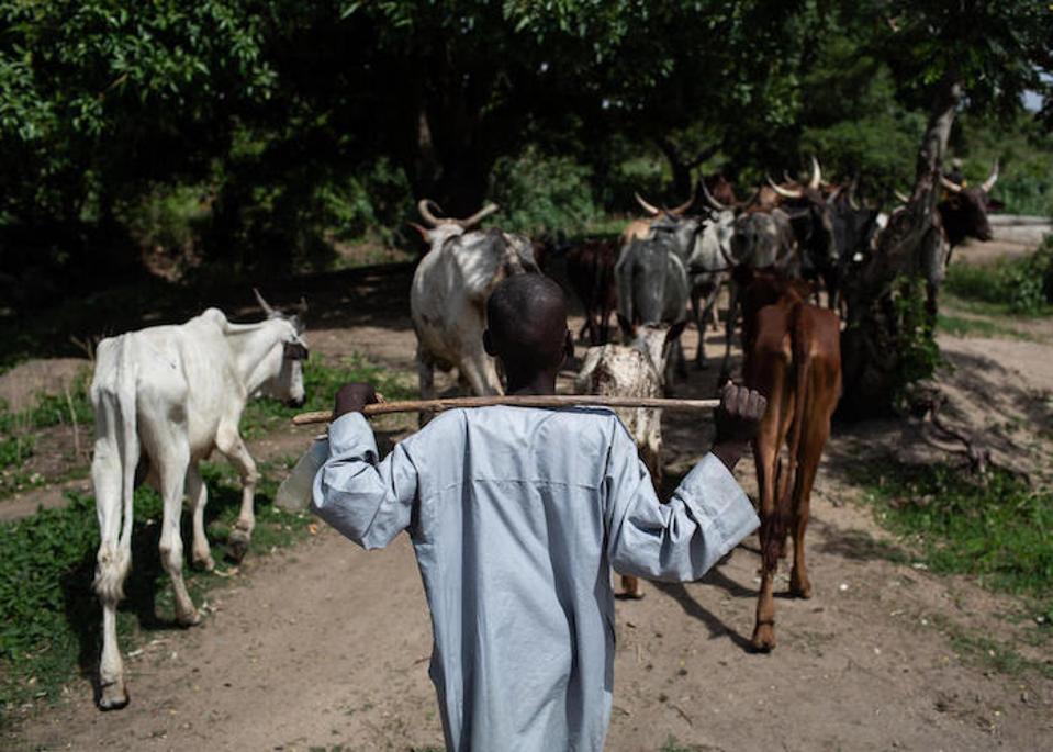 """Bouba, iki yıl önce Kamerun'daki köyü Mabas'a yapılan bir Boko Haram saldırısından kurtulduğundan beri okula gitmiyor. Şimdi UNICEF destekli bir """"radyo okulu"""" programı ile öğrenmeye geri döndü."""