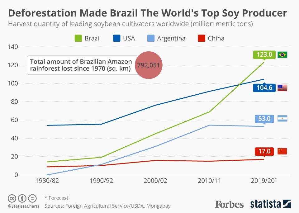 Deforestation Made Brazil The World's Top Soy Producer