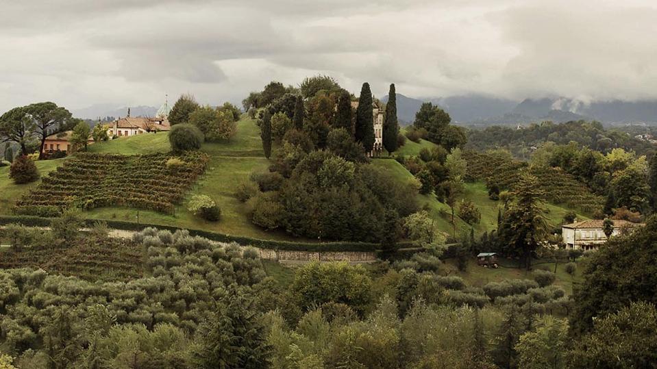 Asolo Wine Area in the Region of Veneto