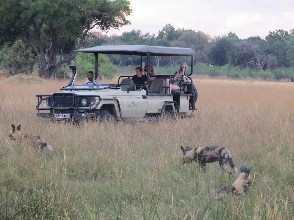 Shinde.  Okavango Delta.  Botswana.