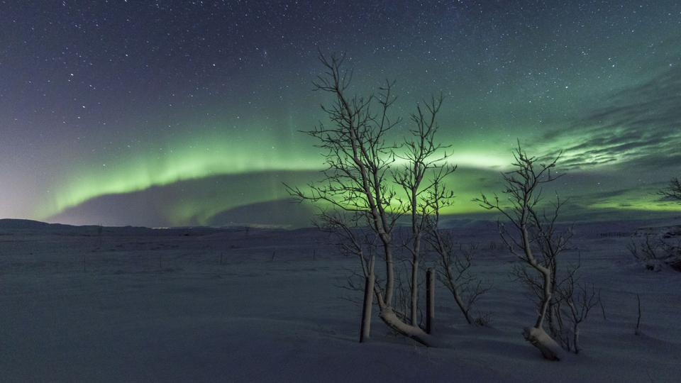 The northern lights from Iceland.