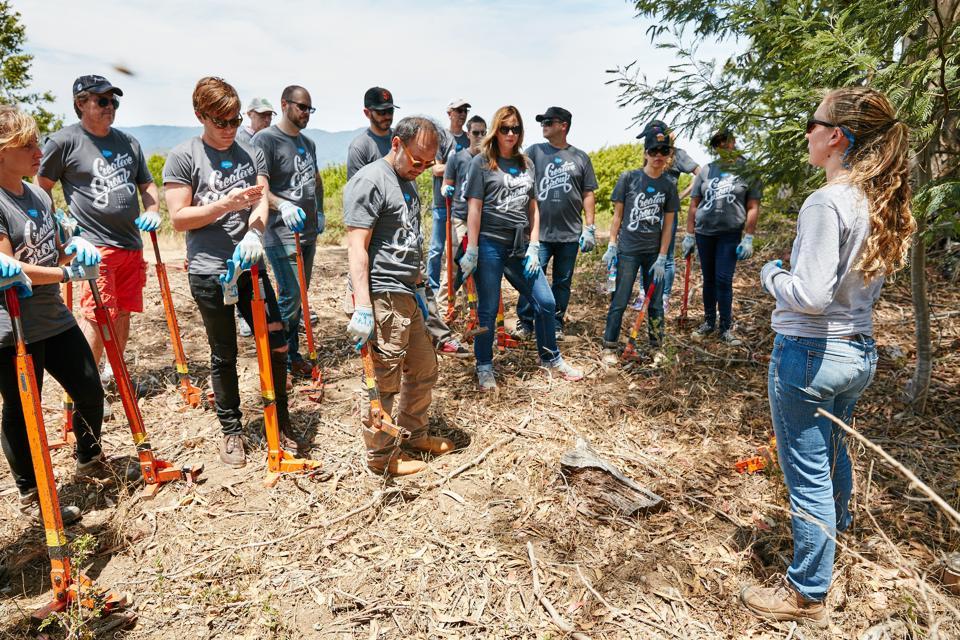 Salesforce volunteer benefit