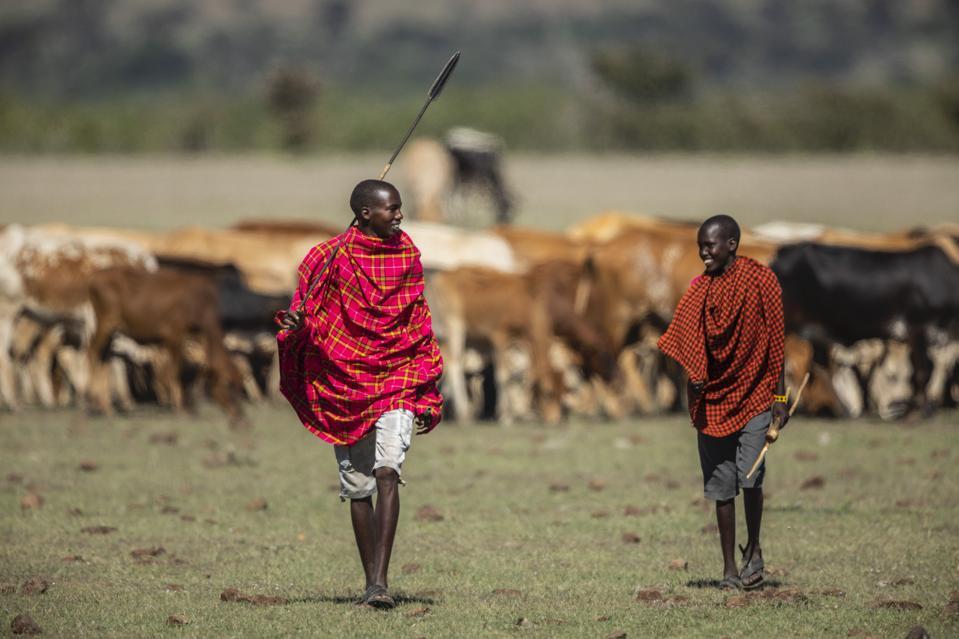 Maasai herders.