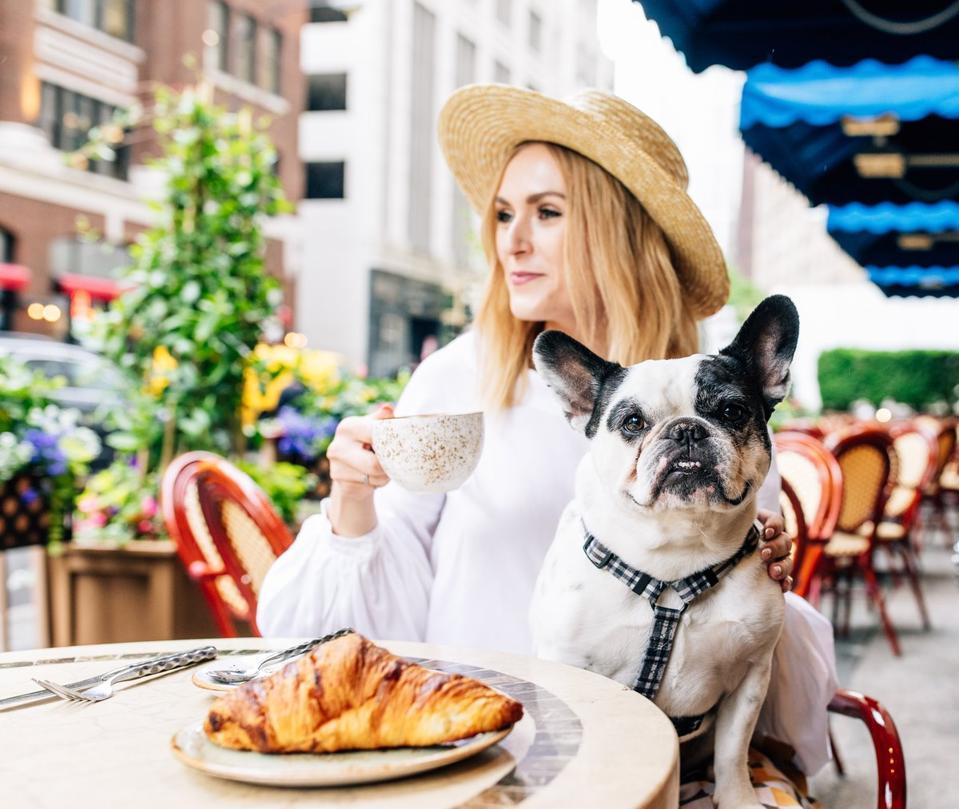 dog at cafe at The Peninsula Chicago