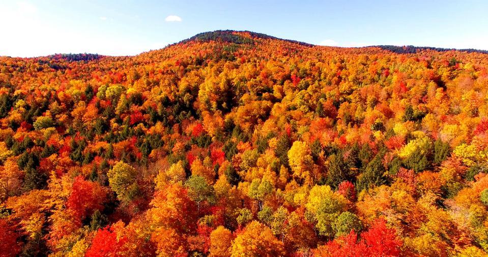 Fall Foliage Maine Amtrak