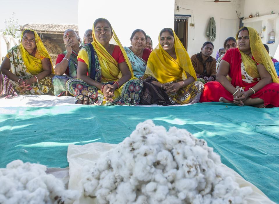 Cotton farmers India