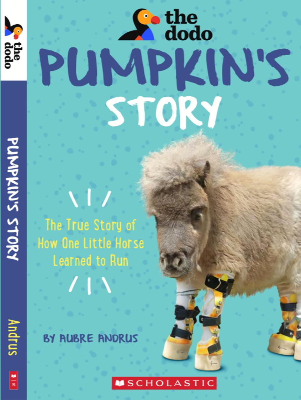 'Pumpkins Story' cover