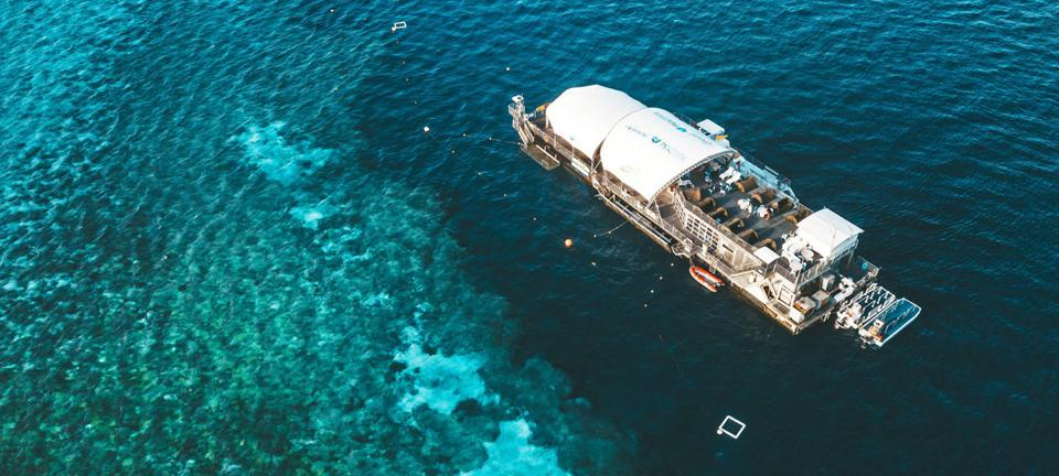 Pontoon on Hardy Reef with deck tents