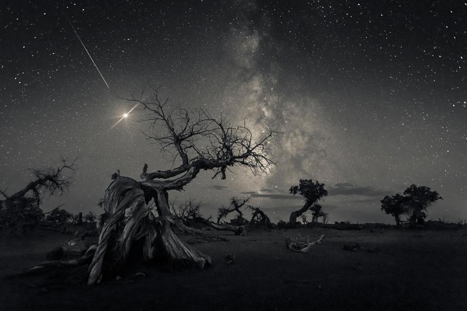 Across the Sky of History © Wang Zheng (China) - WINNER