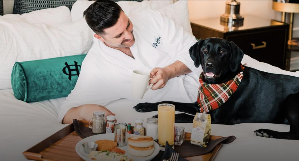 dog with room service on hotel bed