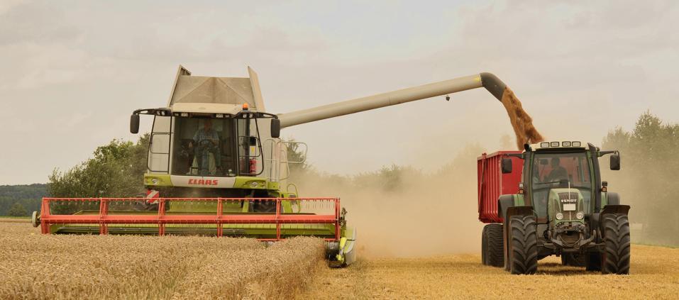 Industrial farming