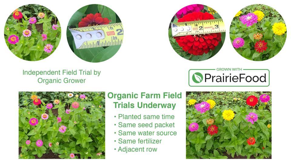 Flowers fed by PrairieFood