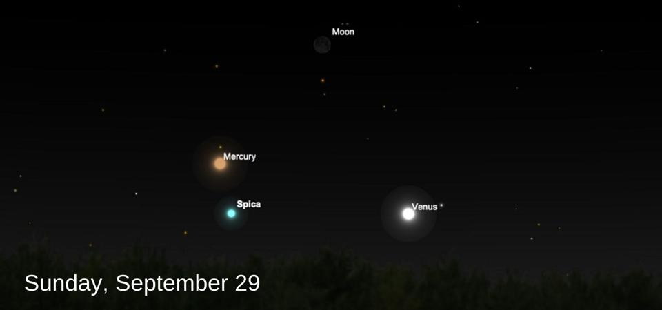 The crescent moon will join Venus, Mercury and Spica in the early evening sky on September 29.