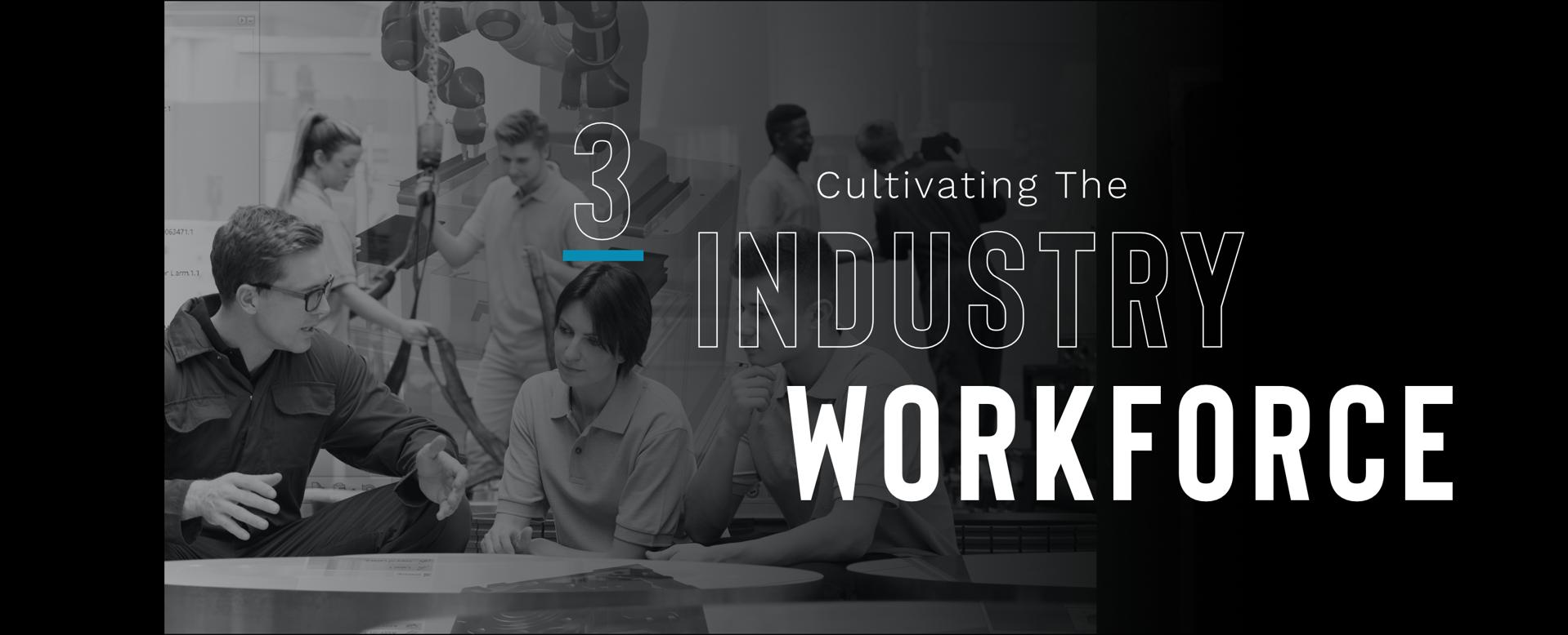 3. Cultivating The Industry Workforce