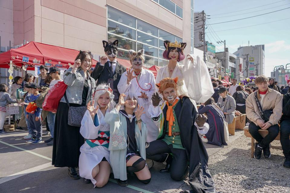 Cats at the Tokyo Festival