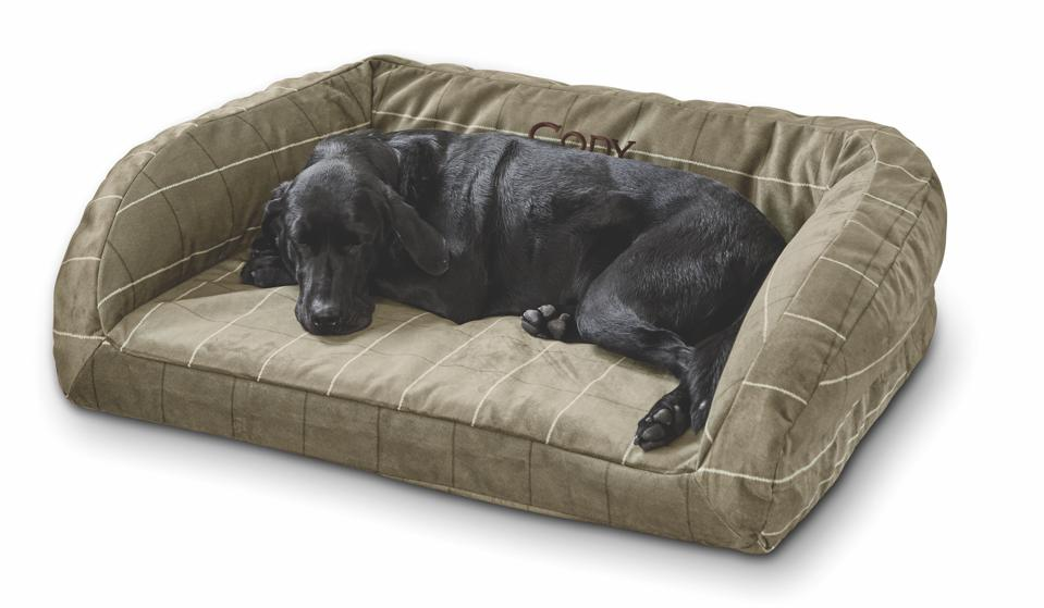black dog in dog bed