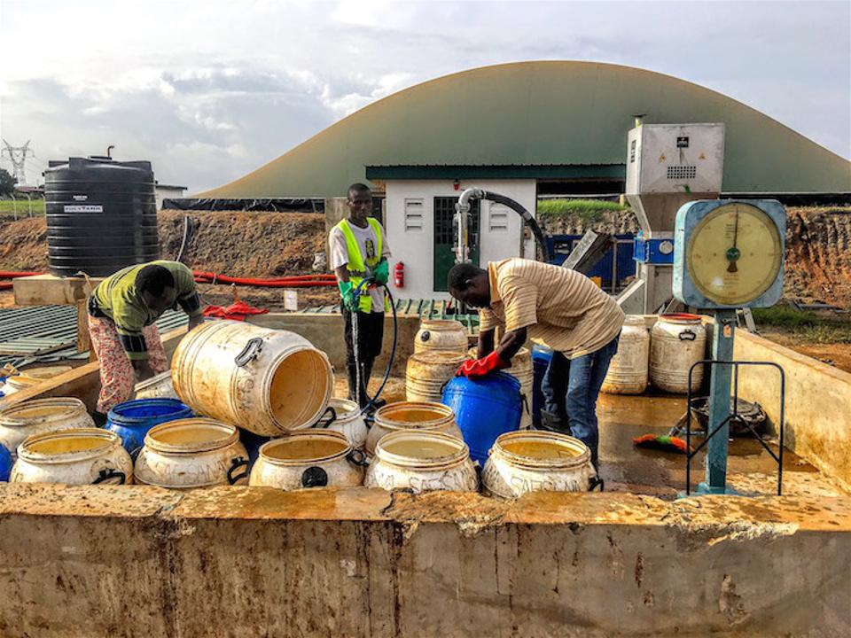 Local organic waste from the food market and slaughterhouses, and from residential areas around Accra, Ghana, are collected and brought to a factory where the waste is processed into fertilizer. The operation is run by the Safi Sana Foundation.