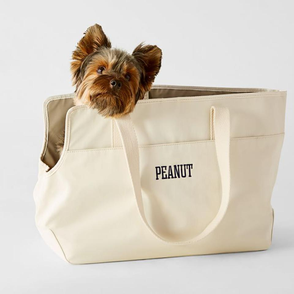 dog in tote bag carrier