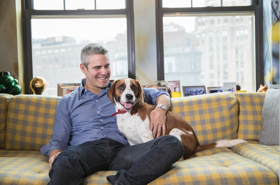 Andy Cohen Talks Life At Home And The Real Estate Of Real Housewives