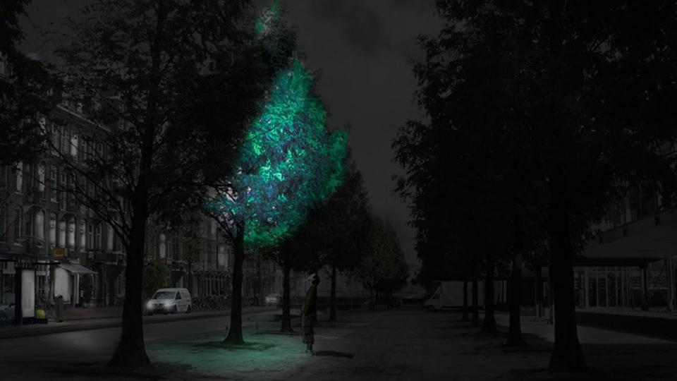 Imagine rather than streetlights you could have bioluminescent trees. Synthetic biology provides many possibilities for sustainable cities reinvented and designed by nature.