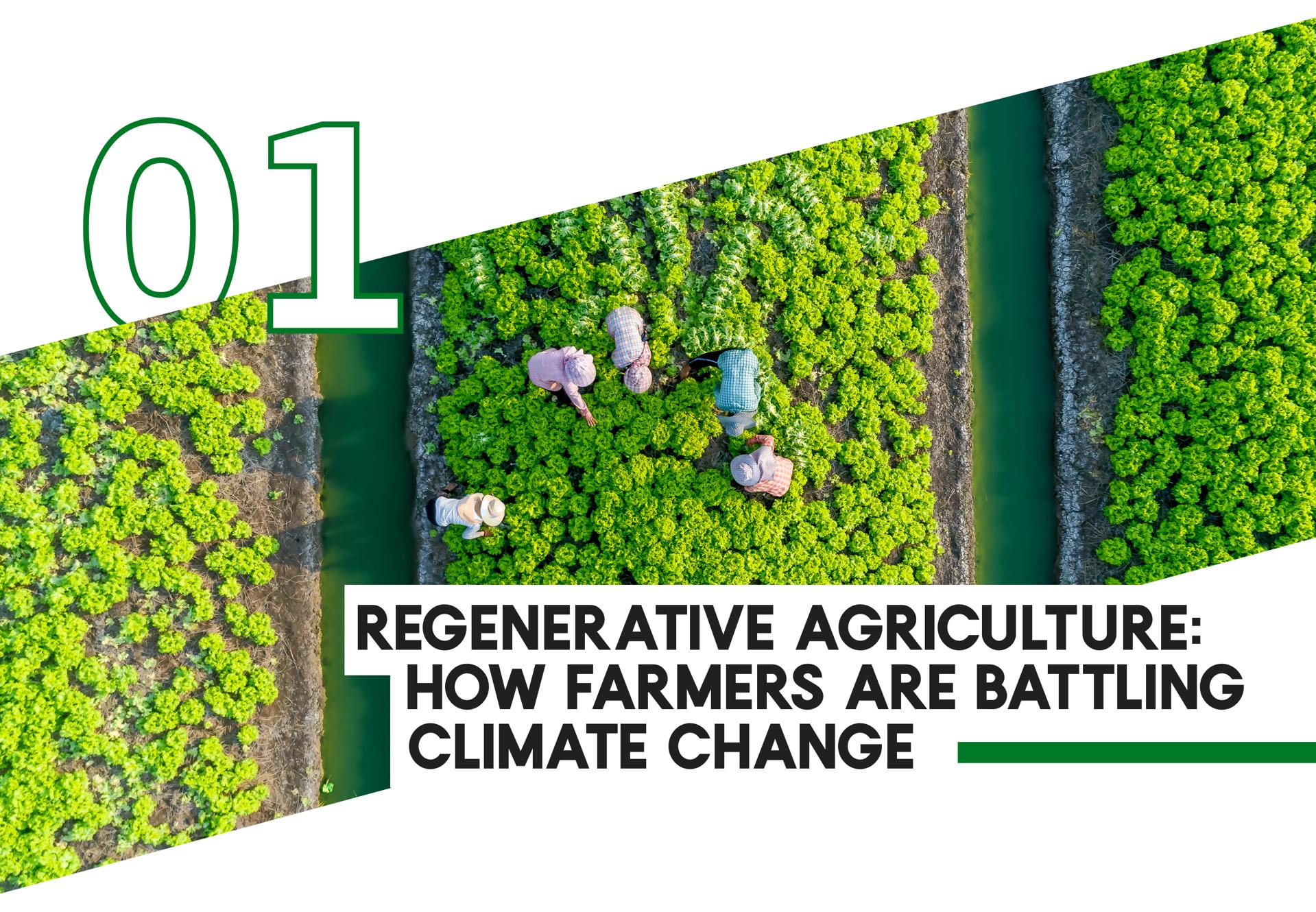 1 Regenerative Agriculture: How Farmers Are Battling Climate Change
