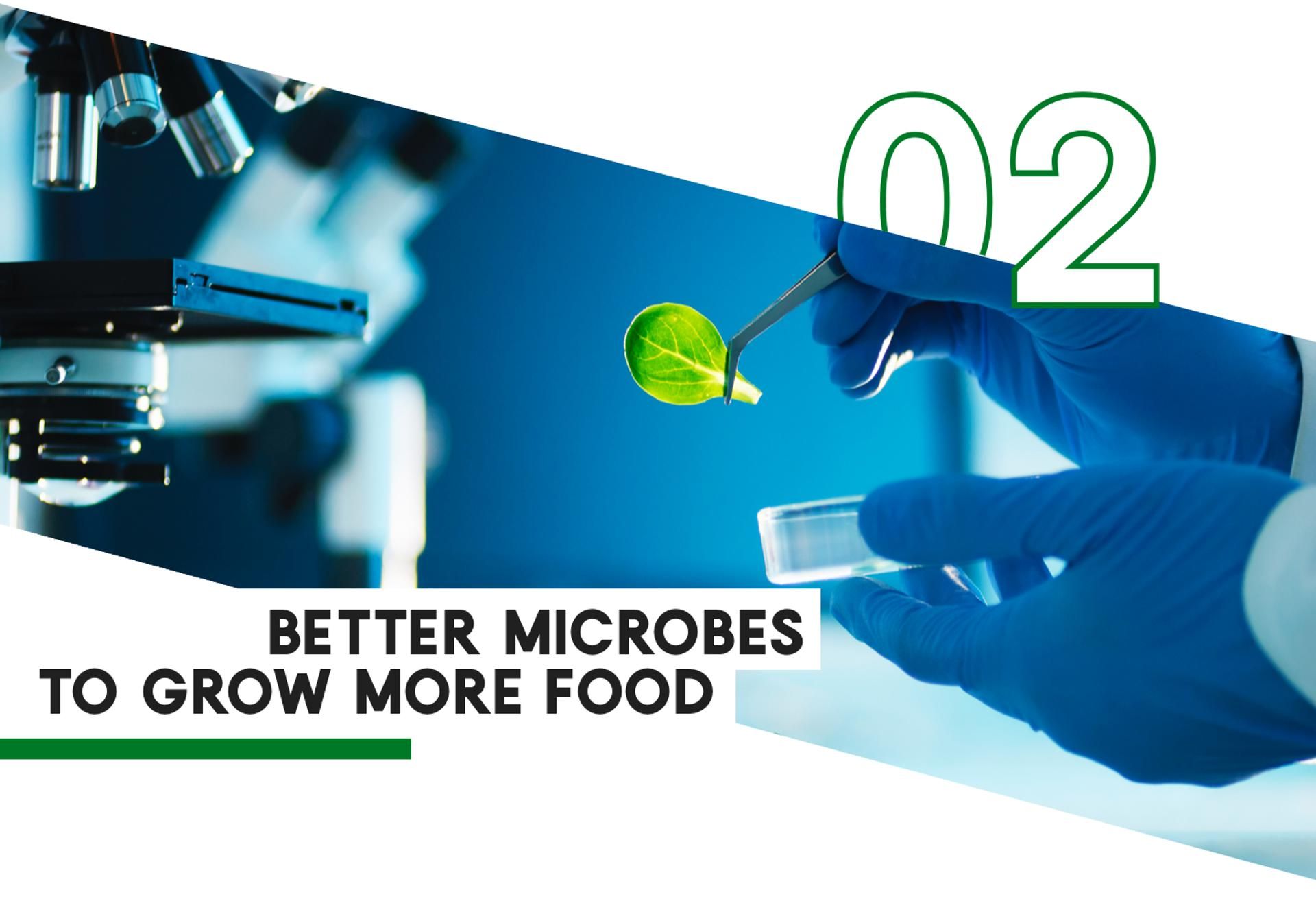 2 Better Microbes To Grow More Food