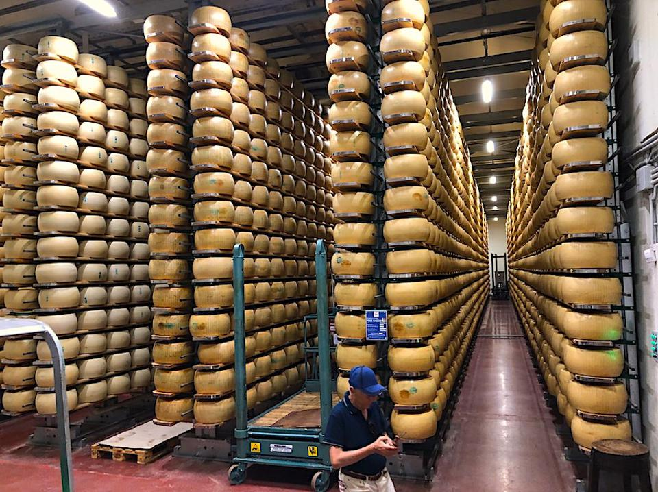 The Panini's have some 8,000 wheels of cheese aging in this dedicated facility.