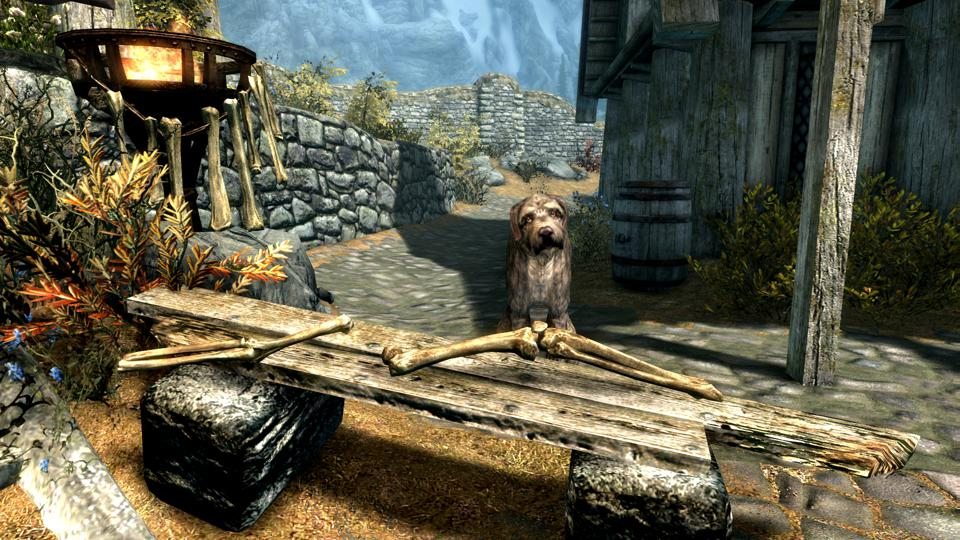Skyrim Mod List 2020.This Dog In Skyrim Would Like To Sell You Some Bones