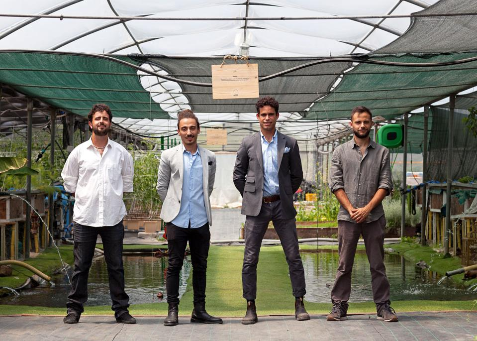 How This Aquaponic Farm Is Transforming Rome's Dining Scene