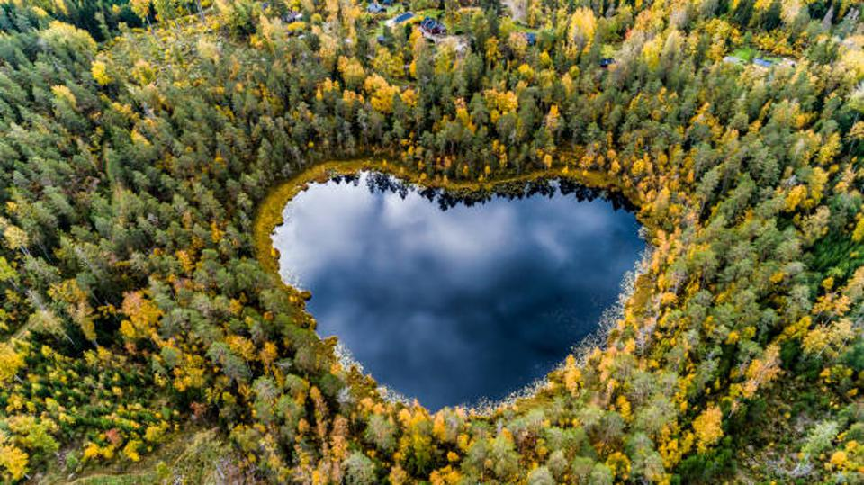 Heart-shaped lake surrounded by forest null