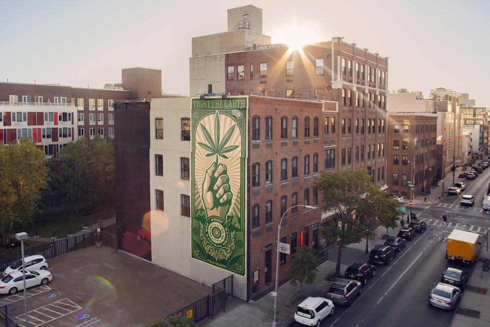 Charlotte's Web, Shepard Fairey, Studio Number One, Williamsburg