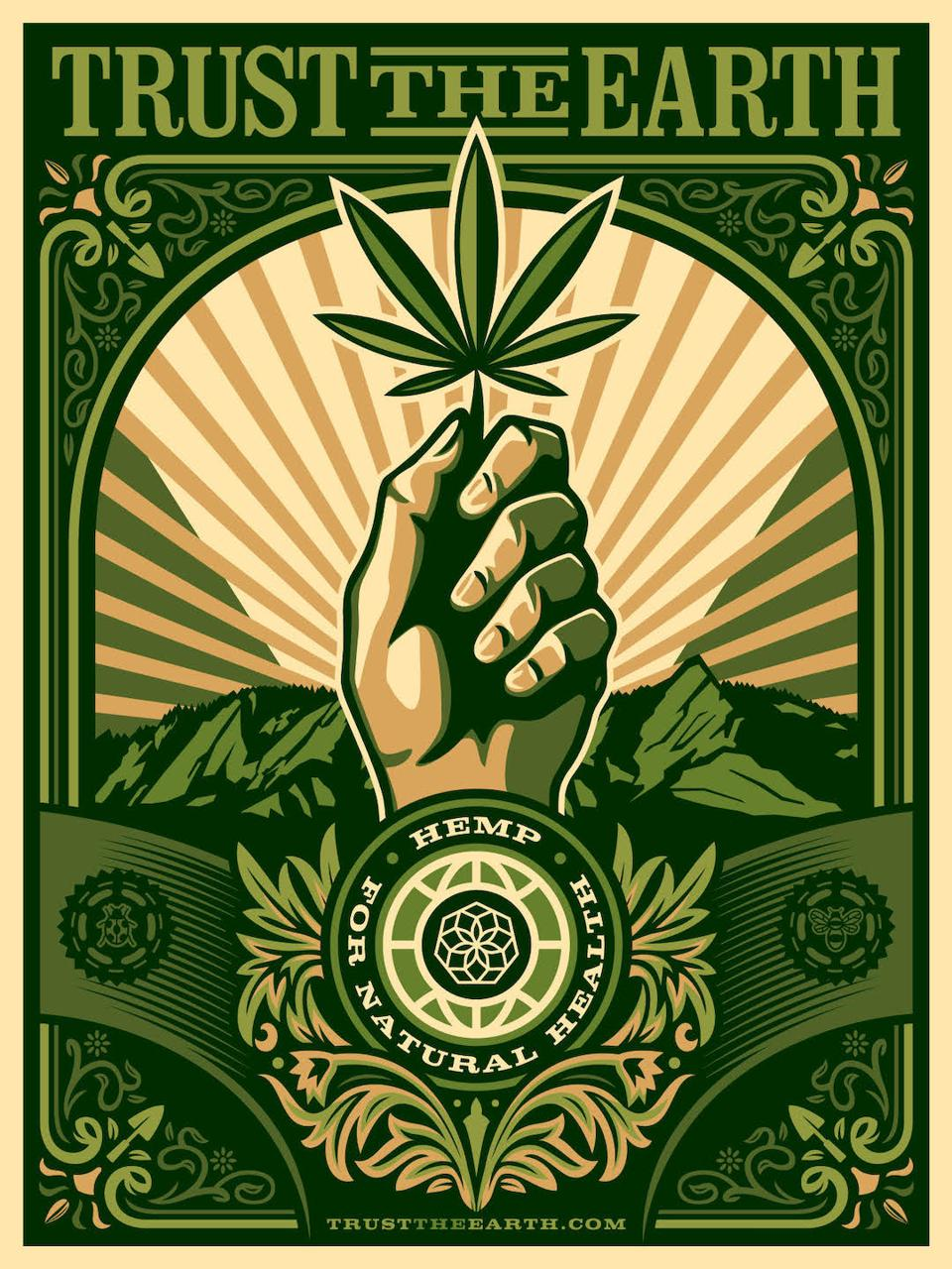 Studio Number One, Shepard Fairey, Charlotte's Web, Hemp, CBD
