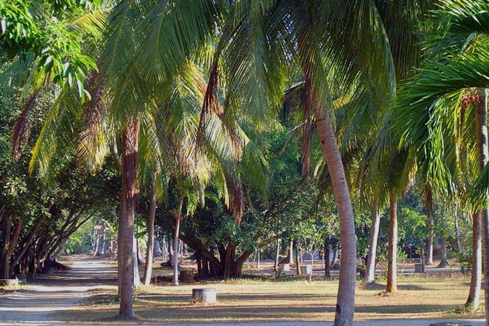 Wat Suan Mokkh International Dharma Hermitage