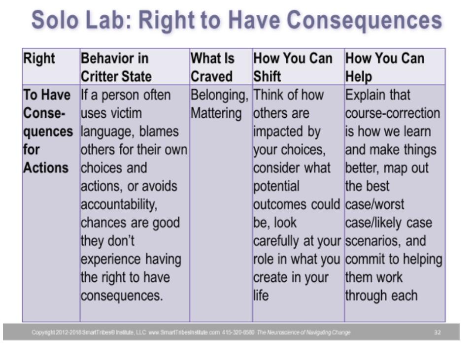 Right to have consequences infographic Christine Comaford