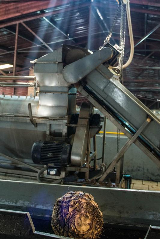 Distillery Operations at Casa Noble