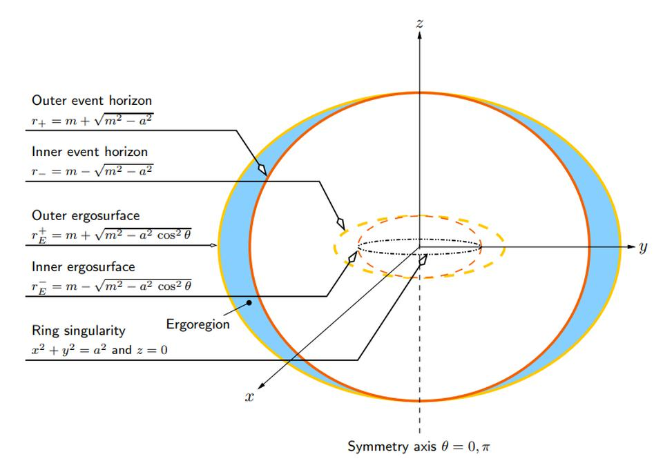 The exact solution for a black hole with both mass and angular momentum was found by Roy Kerr in 1963. Instead of a single event horizon with a point-like singularity, we get inner and outer event horizons, ergospheres, plus a ring-like singularity.