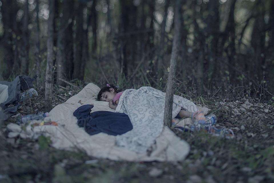 Lamar, 5, sleeps on a blanket in a Serbian forest on September 15, 2015.
