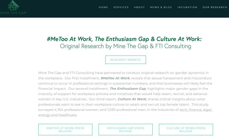 Screen shot of Mine The Gap reesarch website