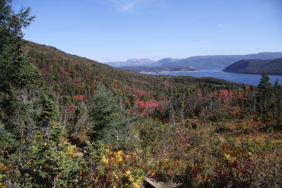 Udsigt Hills Trail Gros Morne