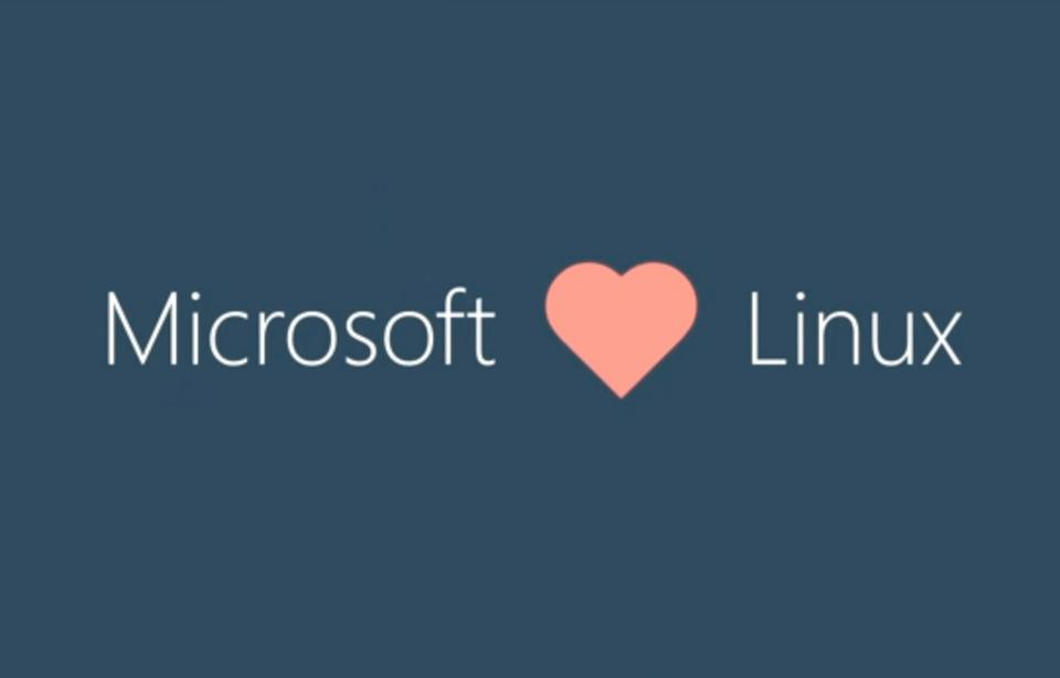 Microsoft To Linux Community: 'We Are An Open Source Company'