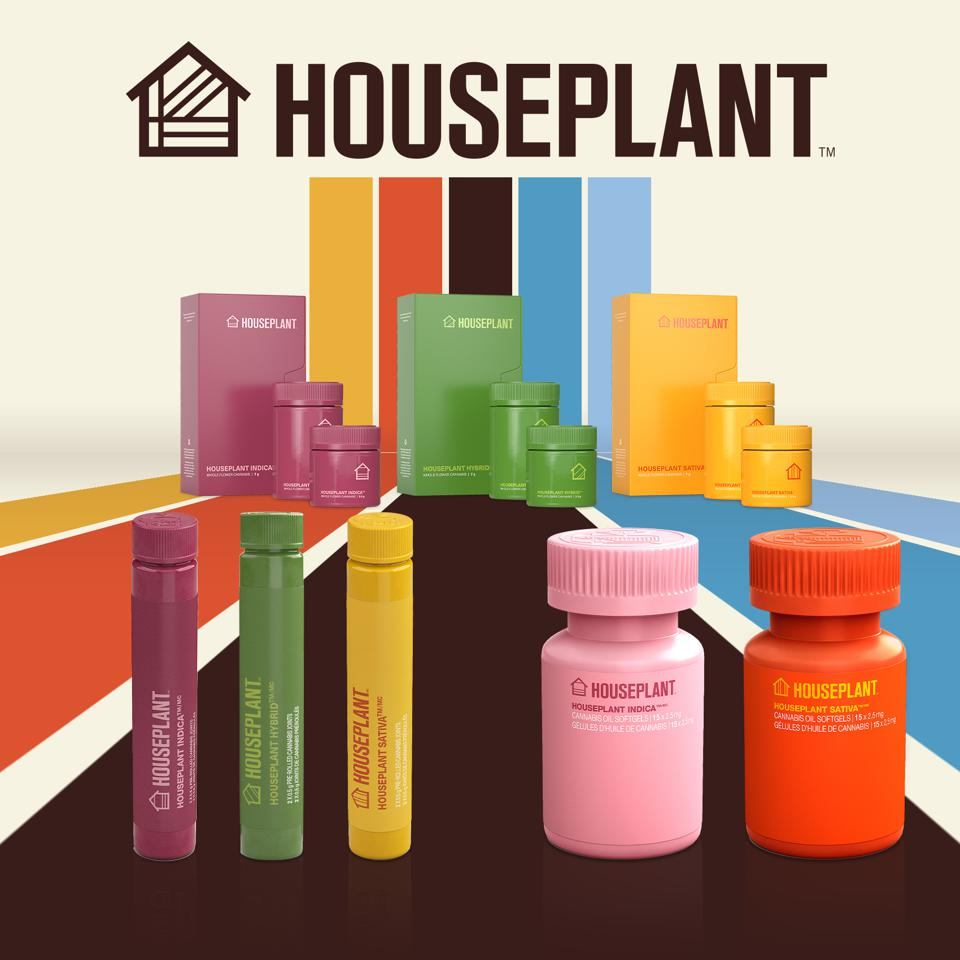 Houseplant's New Products