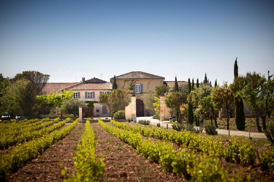 French wine, organic wine, Southern Rhone Valley wine, Famille Perrin, Marc Perrin