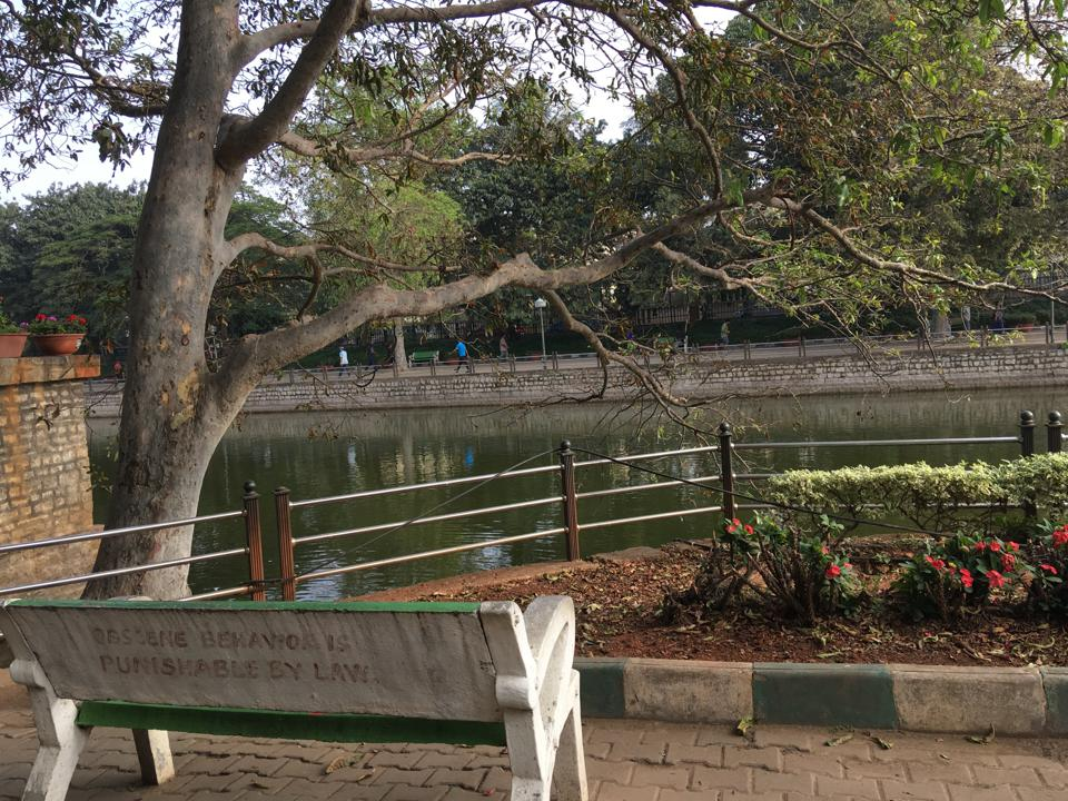 Park with body of water and bench reading ″OBSCENE BEHAVIOR IS PUNISHABLE BY LAW″