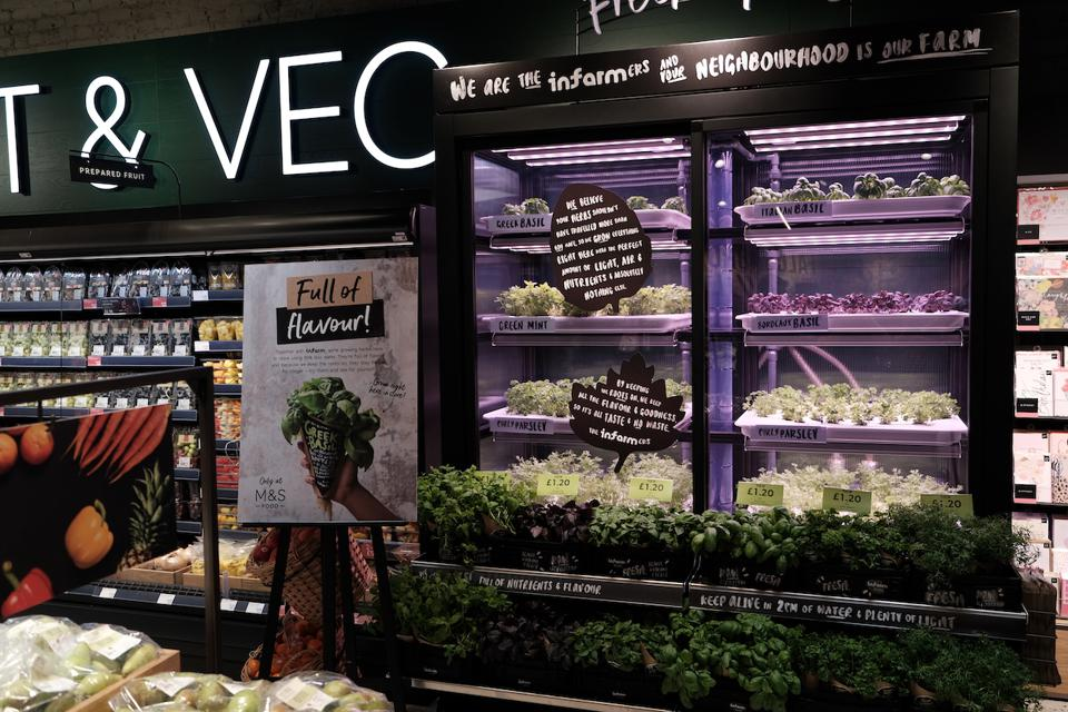 A grocery display of Infarm plants which are grown in a modular vertical farm