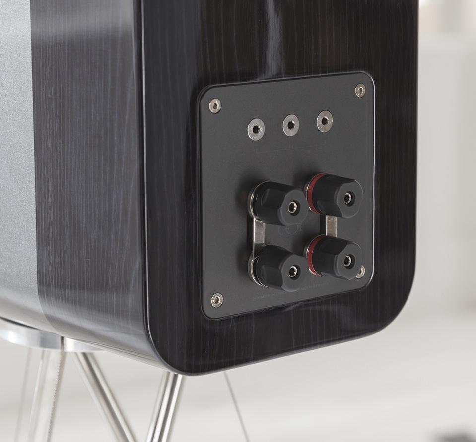 Rear view of Q Acoustics Concept 300