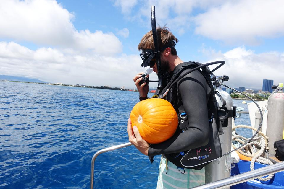 carving pumpkins underwater in Hawaii