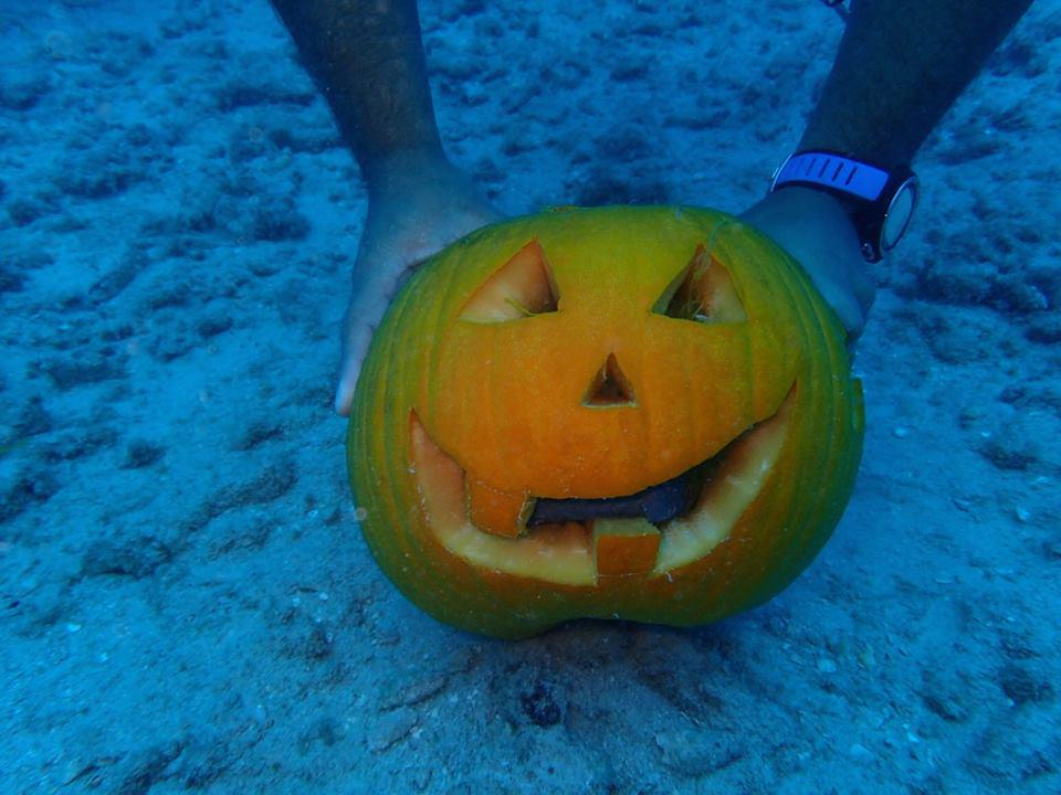 Carving pumpkins underwater in Hawaii.